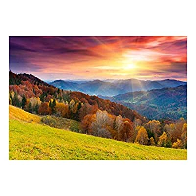 Colorful Mountain Forest in Automn - Landscape - Wall Mural, Removable Sticker, Home Decor - 66x96 inches
