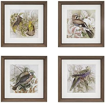 MARTHA STEWART Pretty Bird Wall Art Living Room Double Mat Framed Graphic Home Accent Country Lifestyle Bathroom Decoration