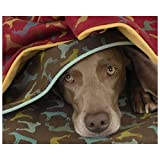 Crypton Gameboard Throver Dog Throw Chesnut