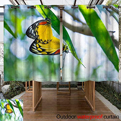 - WinfreyDecor Outdoor Curtains for Patio Sheer Mating Pair of Red spot Jezebel Butterfly W108 x L72