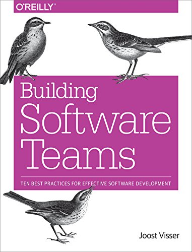 Building Software Teams: Ten Best Practices for Effective Software Development [Visser, Joost - Rigal, Sylvan - Wijnholds, Gijs - Lubsen, Zeeger] (Tapa Blanda)