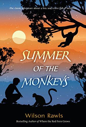 Nodding Monkey - Summer of the Monkeys