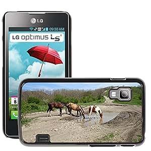 Etui Housse Coque de Protection Cover Rigide pour // M00135112 Caballos Caballo Naturaleza Animales // LG Optimus L5 II Dual E455 / E460