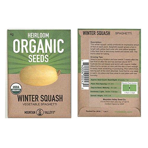 organic spaghetti squash - 7