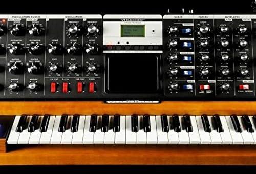 Moog Minimoog Voyager Performer Edition V3