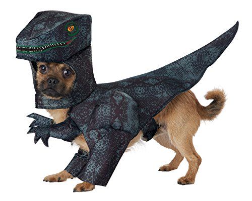 California Costumes Collections PET20169 Pupasaurus Rex Dog Costume, -