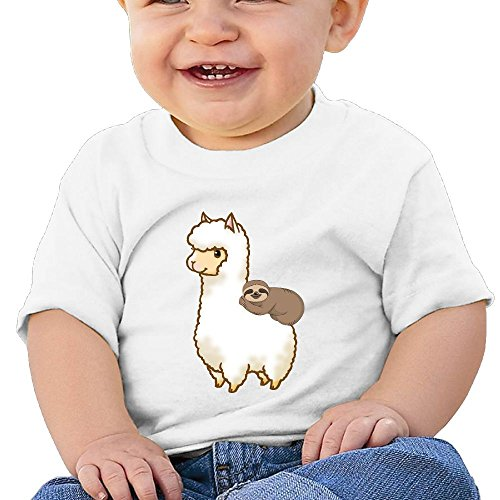 (BCOWBONEOWGDF Unisex Baby Boys Girls Babes Lovely Sloth Riding Llama Cotton T Shirt Tees 24 Months White)