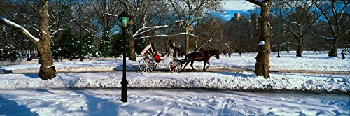 Panoramic view of snowy city street lamps horse and carriage in Central Park Manhattan New York City NY on a sunny winter day Poster Print (27 x 9) - Horse Carriage Central Park