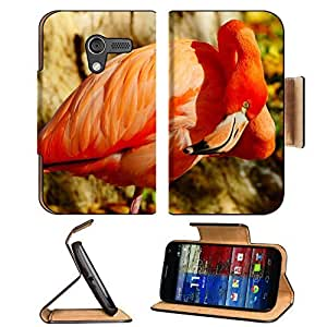 Birds Animals Flamingos Fishing Stream Motorola Moto X Flip Case Stand Magnetic Cover Open Ports Customized Made to Order Support Ready Premium Deluxe Pu Leather 5 7/16 Inch (138mm) X 3 1/16 Inch (78mm) X 9/16 Inch (14mm) MSD Mobility cover Professional M by lolosakes