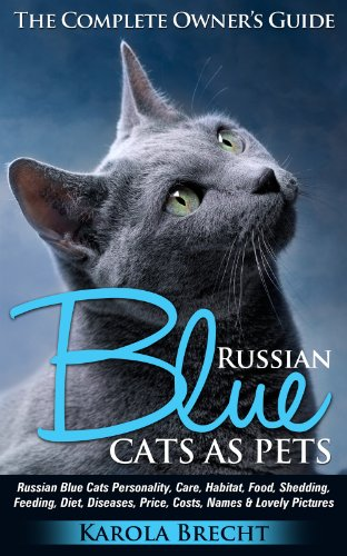 - Russian Blue Cats as Pets.