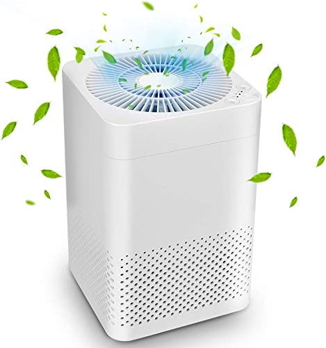 Air Purifier – True HEPA Air Purifiers for Home, Auto Mode Sleep Mode, Reduce Pet Dander, Household Odor, Smoke Dust, 3-in-1 Air Filter, Up to 161.46 sq. Home Office, Auto Replacement