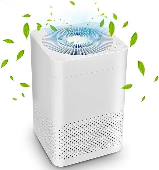Purificador de aire 3 en 1 True HEPA purificador de aire, modo de ...