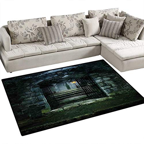 (Gothic Bath Mat 3D Digital Printing Mat Image of The Gate of a Dark Old Haunted House Cemetery Dead Myst Fiction Art Print Door Mat Increase 48
