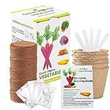 Vegetable Herb Garden Seed Growing Starter Kit Indoor for Kids Easily Grow 5 Fresh Veggie Garden Kit Tomatoes,Purple Carrot,Rainbow Chard,Brussel Sprout
