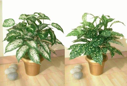 2-x-22-bushes-artificial-plants-without-pots