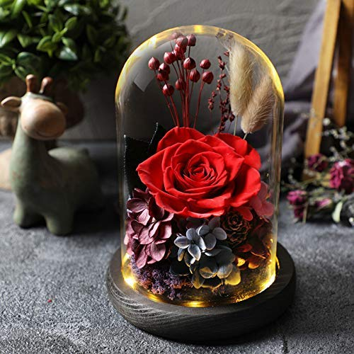 Hecaty Handmade Preserved Rose 丨4.9 inch Forever Rose with LED Light Enchanted 丨Beauty Beast Fresh Rose Lasts in Glass Dome丨Gift for Birthday, Anniversary, Valentine's Day, Christmas(red)