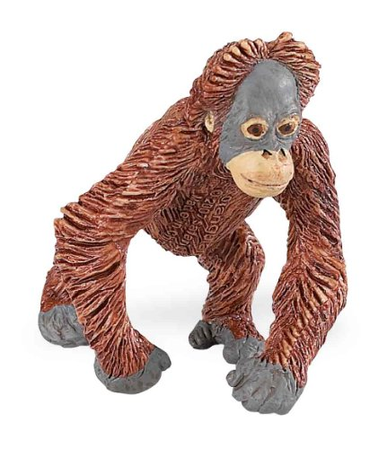 Safari Ltd Wild Safari Wildlife Orangutan Baby