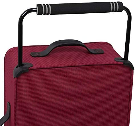 it baggage World's Lightest Los Angeles Softside Upright, Queen Purple, Checked-Large 33-Inch