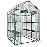 Plant Large Walk in Greenhouse with Clear Cover - 12...