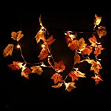 Thanksgiving Decorations Garland Leaves with Lights, Thanksgiving Christmas String Lights Battery Operated for Home Outdoor Indoor, 8.2 Feet 20 LED, Thanksgiving Gift
