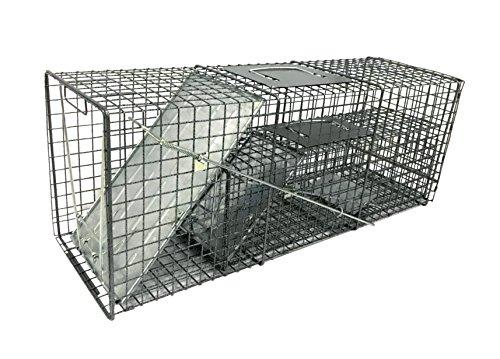 Groundhogs Op Havahart 1079 Large 1-Door Humane Animal Trap for Raccoons Cats