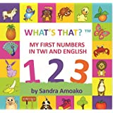 What's That: My First Numbers in Twi and English