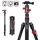 Zomei M5 Travel Camera Tripod,Lightweight Aluminum Tripod Compact Portable Stand with 360 Degree
