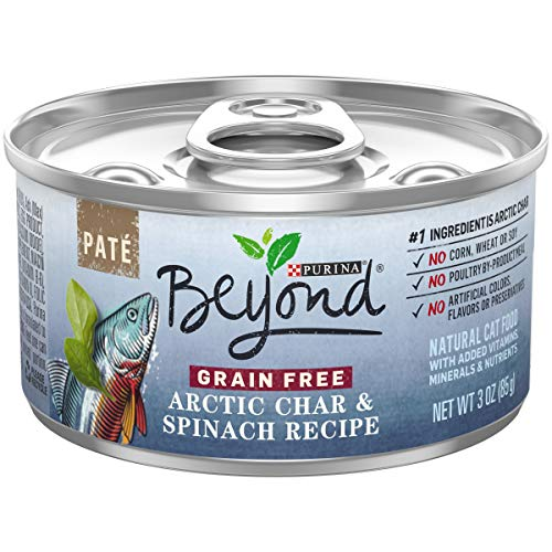 Purina Beyond Grain Free, Natural Pate Wet Cat Food; Grain Free Arctic Char & Spinach Recipe  - (12) 3 oz. Cans