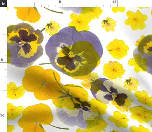 Pressed Pansy Fabric - Flowers Pansies Yellow Purple Floral Flowers Floral Flowering Natural Garden Bright Pansy by Ornaart Printed on Petal Signature Cotton Fabric by The Yard