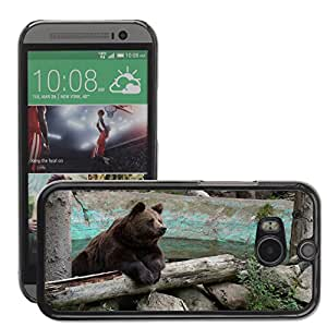 Super Stellar Slim PC Hard Case Cover Skin Armor Shell Protection // M00126540 Bear Brown Bear Animal World Grizzly // HTC One M8