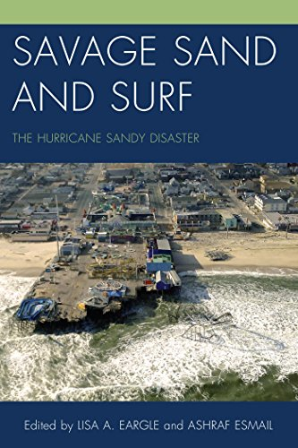 savage-sand-and-surf-the-hurricane-sandy-disaster