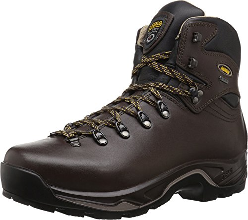 (Asolo TPS 520 GV Boot - Men's Chestnut 7)