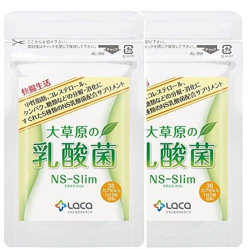大草原の乳酸菌NS-Slim(36粒)×2セット B01LAU62Z0