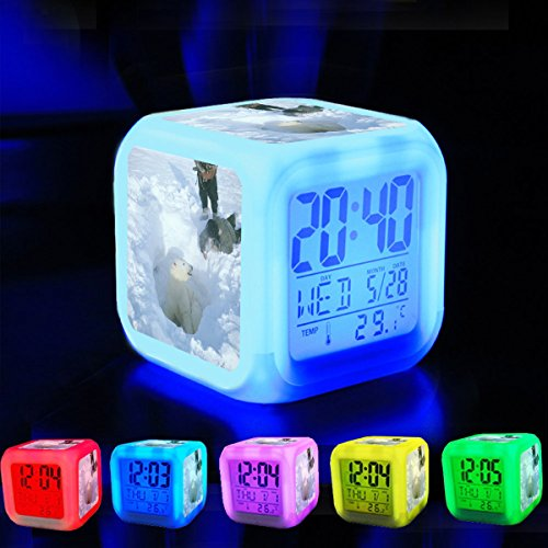 Alarm Clock 7 LED Color Changing Wake Up Bedroom with Data and Temperature Display (Changable Color) Customize the pattern-533.which The World Wildlife Fund puts the number of polar bears