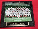 1940 Reds World Series Champions Collector Plaque w/8x10 Photo