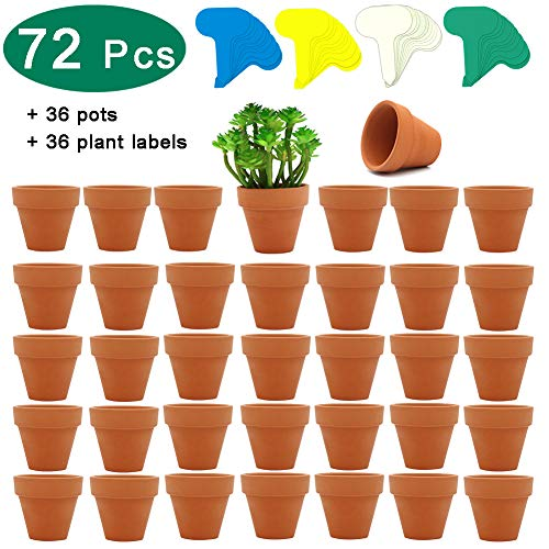 - 36 Pcs Small Mini Clay Pots, PETUOL 2inch Tiny Terracotta Pots Clay Ceramic Pottery Planter Cactus Flower Pots Succulent Nursery Pots - Great for Indoor/Outdoor Plants, Crafts, Wedding Favor