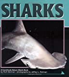 img - for Sharks (Nature Watch) book / textbook / text book