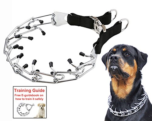 Dog Prong Training Collar, Stainless Steel Choke Pinch Dog Collar with Comfort Tips (Collar) - Dog Correction Collar