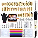 Soldering Iron Wood Burning Kit 72PCS, Jeerbly Professional Pyrography Kit - Wood Burner Tool, Embossing, Carving, Soldering Tips Arts and Crafting Supplies