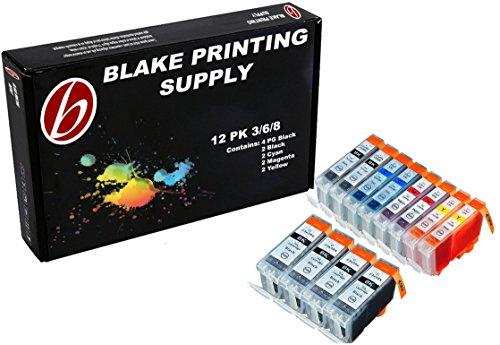 Blake Printing Supply 12 Pack Compatible CLI 8 , CLI-8 , CLI8 , PGI 5 , PGI-5 , PGI5 4 Big Black, 2 Cyan, 2 Magenta, 2 Yellow, 2 Small - Pixma Mp800r