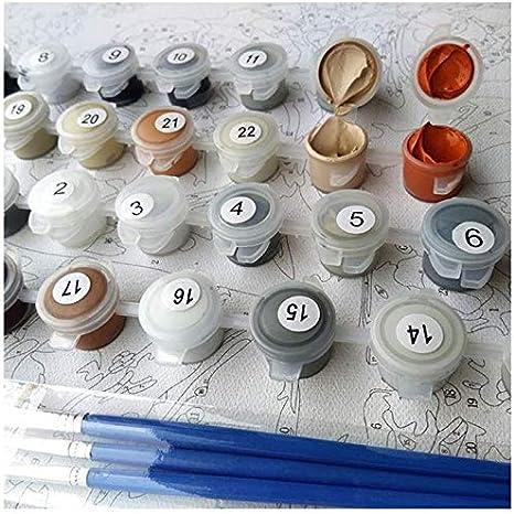 Pittura per Angeli da Giardino 16 * 20 Pollici Quadri dArte per Bambini Adulti LMXYF Dipingi con I Kit Numerici Pittura Digitale Fai-da-Te con Kit di Numeri su Tela
