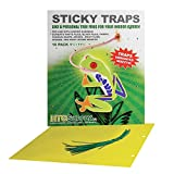 100-Pack HTG Supply Extra Large 9.75 Inch by 11.75 Inch Sticky Insect Traps (100 Traps)