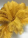 AABABUY 200pcs Ostrich Feathers 12-14inch(30-35cm) for Home Wedding Party Decoration (Gold)