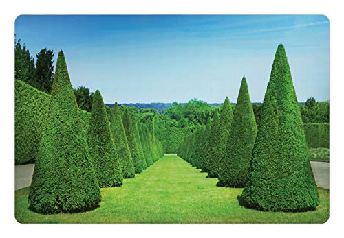 Lunarable Boxwood Hedge Pet Mat for Food and Water, French Garden Art Conical Hedges Lines from Versailles Chateau, Rectangle Non-Slip Rubber Mat for Dogs and Cats, Lime Green Deep Sky Blue