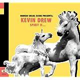 Broken Social Scene Presents: Kevin Drew Spirit If...