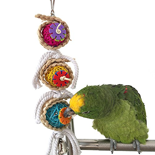Yunt Natural Sepak Takraw Funny Pet Bird Parrot Parakeet Bite Chew Toy Pet Macaw African Greys Budgies Funny Swing Bells Toy(Bird Toy 1)