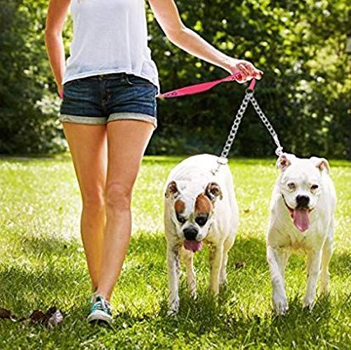 WLcute Double Dog Leash Two-Way Iron Chain Pet Trainer Safety Rope Splitter for Walking Training Suitable for Walking with Two Dogs,XL