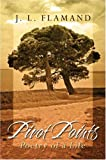img - for Pivot Points: Poetry of a Life book / textbook / text book