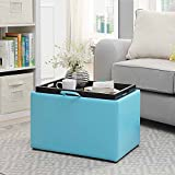 Convenience Concepts Accent Storage Ottoman, Teal Review