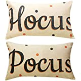 Decemter Hocus Pocus Halloween Cotton Linen Home Decor Cushion Covers Pack of 2, 12x20